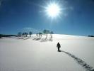 雪途Ellie
